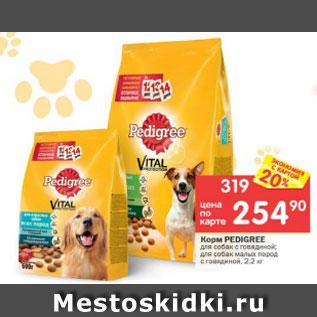 Дешевая одежда для маленьких собак