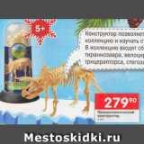Скидка: Палеонтологический конструктор