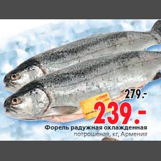 пример: время рыбная база цены форель одинцово поверхности термобелья