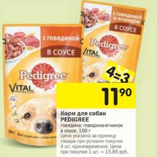 Бесплатный подарок от Pedigree для щенков