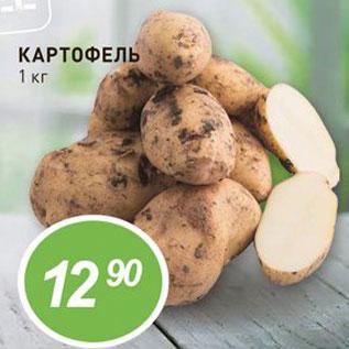 Акция - Картофель