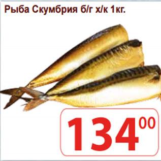 Акция - Рыба Скумбрия б/г х/к
