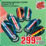 Метро Акции - Шлепанцы мужские IGUANA размеры: 41-45 модели в ассортименте