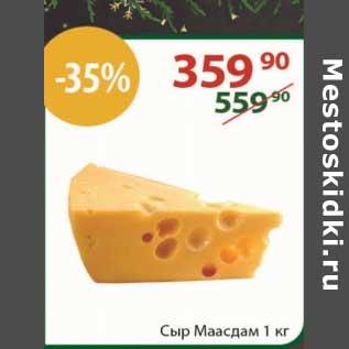 Акция - Сыр Маасдам
