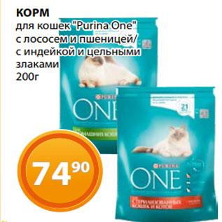 """Акция - КОРМ для кошек """"Purina One"""" с лососем и пшеницей/ с индейкой и цельными злаками 200г"""