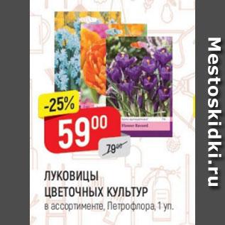 Акция - Луковицы цветочных культур Петрофлора