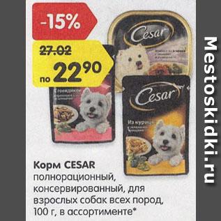 Акция - Корм CESAR для взрослых собак 100г