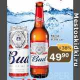 Перекрёсток Экспресс Акции - Пиво BUD светлое 5%
