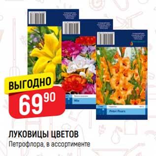 Акция - Луковицы цветов Петрофлора