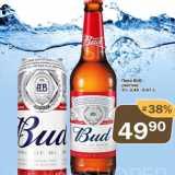 Пиво Bud светлое 5%, Количество: 1 шт