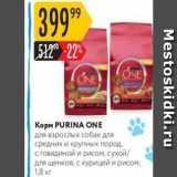 Магазин:Карусель,Скидка:Корм PURINA ONE