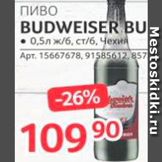 Акция - Пиво Budweiser