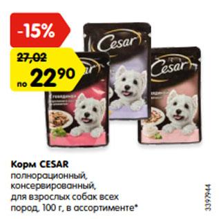 Акция - Корм CESAR  полнорационный,  консервированный,  для взрослых собак всех  пород, 100 г, в ассортименте*