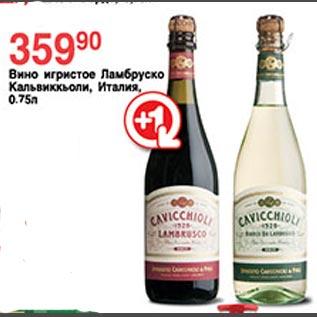 Ламбруско Игристое Вино