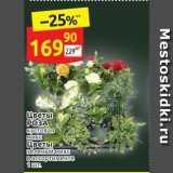 Магазин:Дикси,Скидка:Цветы РОЗА