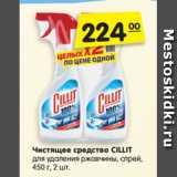 Чистящее средство CILLIT для удаления ржавчины, спрей, 450 г, 2 шт.