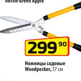 Акция - Ножницы садовые Woodpecker 57см