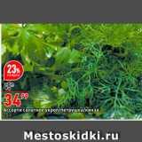 Скидка: Ассорти салатное/укроп/петрушка/кинза