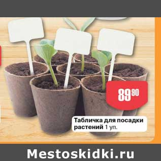 Акция - Табличка для посадки растений