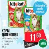Скидка: Корм для кошек Китикет