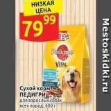 Магазин:Дикси,Скидка:Сухой корм ПЕДИГРИ